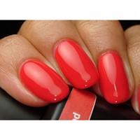 Fuchsia Red Pink Gellac