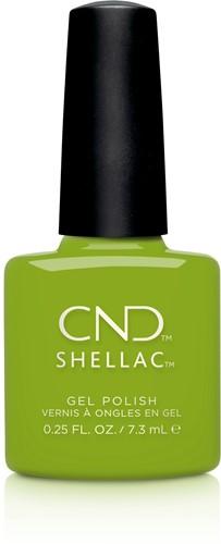 CND™ Shellac™ Crisp Green